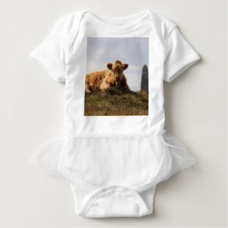 Luing cow on the Isle of Islay, Scotland Baby Bodysuit