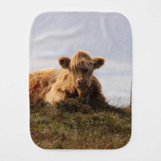 Luing cow on the Isle of Islay, Scotland Burp Cloth