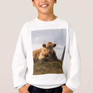 Luing cow on the Isle of Islay, Scotland Sweatshirt