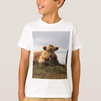 Luing cow on the Isle of Islay, Scotland T-Shirt