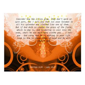Luke 12:27 Consider how the lilies grow. Postcard