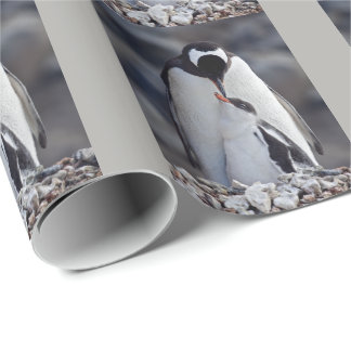 Lullaby Wrapping Paper