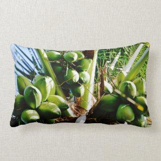 Lumbar Pillow - Coconuts - Caribbean Island