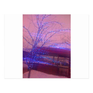 Lumières de Noël bleues Cartes Postales