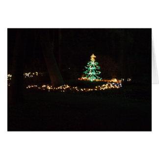 lumières de Noël Cartes De Vœux
