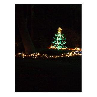 lumières de Noël Cartes Postales