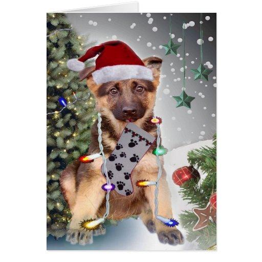 Lumières de Noël de berger allemand Carte De Vœux