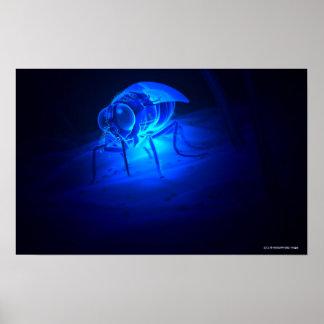 Luminescent illustration of a tsetse fly poster