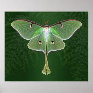 Luna Emerald Art Print -24x20 -other sizes also
