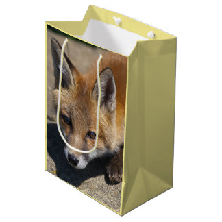 Luna Fox Gift Bag