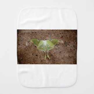 Luna Moth Burp Cloth