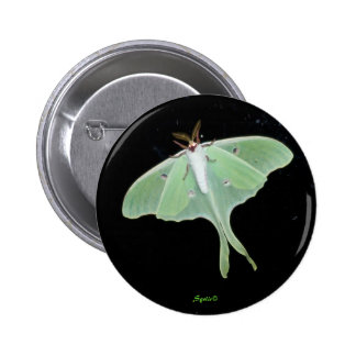 Luna Moth  Insect Button
