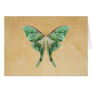 Luna Moth Note Card