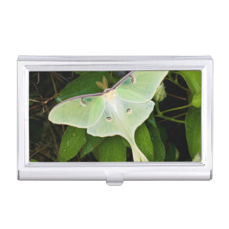 Luna Moth on Carnaby Clematis Business Card Cases