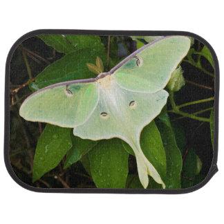 Luna Moth on Carnaby Clematis Floor Mat