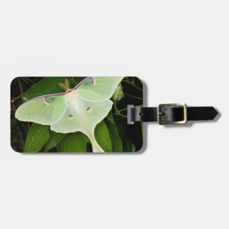 Luna Moth on Carnaby Clematis Travel Bag Tag