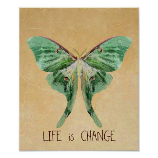 Luna Moth Print Life is Change