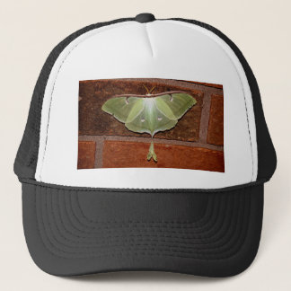Luna Moth Trucker Hat