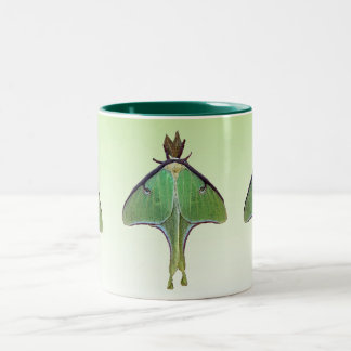 Luna Moth Two-Tone Coffee Mug