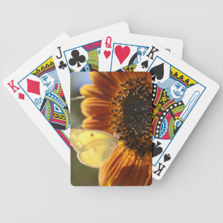 Lunar Moth Sun Landing Bicycle Playing Cards