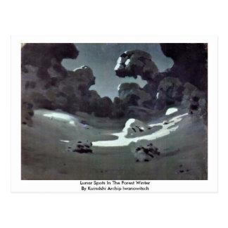 Lunar Spots In The Forest Winter Postcard