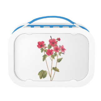 Lunchbox with a flower vintage illustration