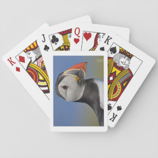 Lunga Puffin Poker Deck