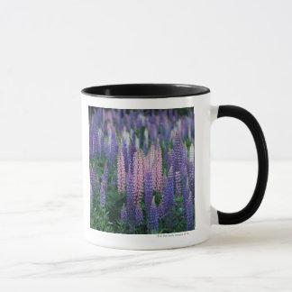 Lupine Mug
