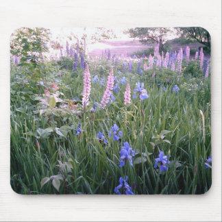 Lupines & Irises Mouse Pad
