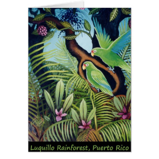 Luquillo Parrots Card