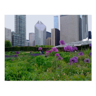 Lurie Garden Chicago Postcard