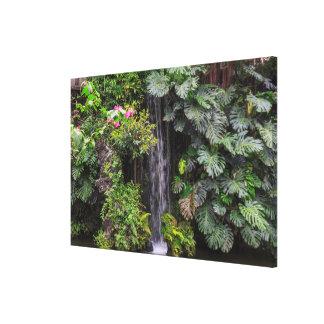 Lush Garden Waterfall, China Canvas Print