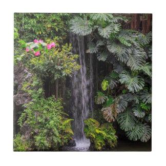 Lush Garden Waterfall, China Ceramic Tiles