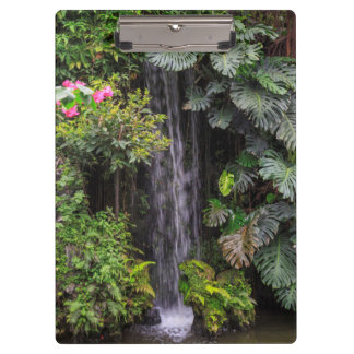 Lush Garden Waterfall, China Clipboard