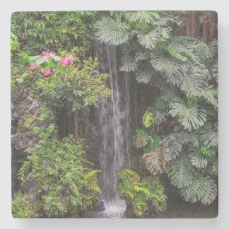 Lush Garden Waterfall, China Stone Coaster
