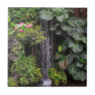 Lush Garden Waterfall, China Tile