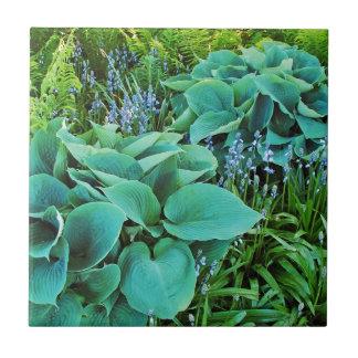 Lush green hosta and fern plant garden tile