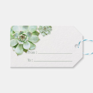 Lush Green Succulent Wedding Gift Tags