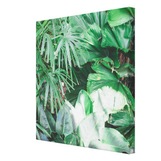 "Lush Greenery 12"" x 12"" Canvas Print"