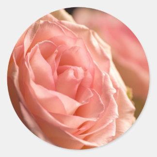 Lush Pink Rose Stickers
