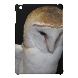Luther- Common Barn Owl III Cover For The iPad Mini