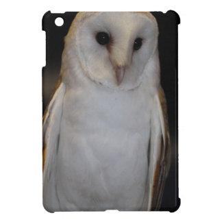 Luther- Common Barn Owl IV iPad Mini Cover