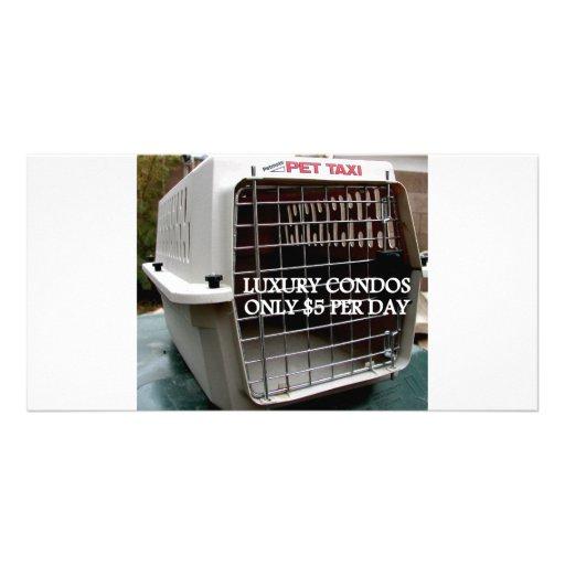 LUXURY CONDOS PHOTO CARD TEMPLATE