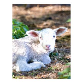 Lying lamb between nettle plants letterhead template