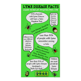 Lyme Disease  Awareness Educational Facts Poster