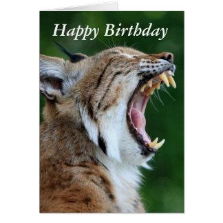 Lynx, bobcat beautiful photo happy birthday card