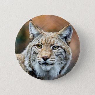 Lynx Bobcat Wildlife Predator Cat 2 Inch Round Button