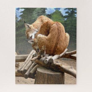 Lynx cats jigsaw puzzle