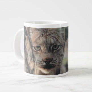 Lynx, Lynx canadensis, Denali National Park, Large Coffee Mug