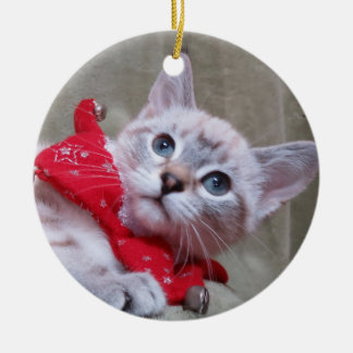 Lynx Point Siamese Ornament